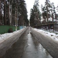 Улица Ленинская, Ильинский