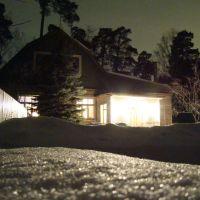 Дом, ночь, зима, Ильинский
