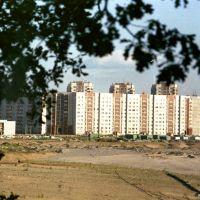 Район улицы Гудкова (1992), Ильинский