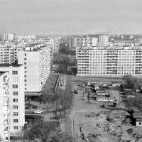 Улица Молодёжная (1977), Ильинский
