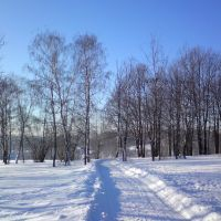 Winter Morning, Калининград