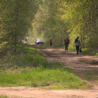 Дачники на дороге, Керва