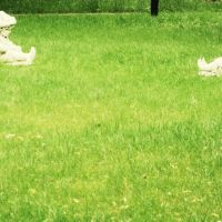 скульптуры в парке, Климовск