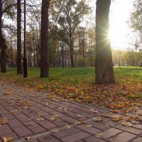 Климовск. Городской парк, Климовск