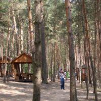 Солнечный лес, Клязьма