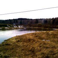 Река Москва 1, Кожино