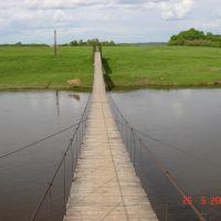 На мосту, Кожино