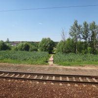 Станция Толстопальцево, Кокошкино
