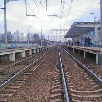 Платформа, Кокошкино