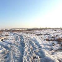 Весеннее поле, Кокошкино
