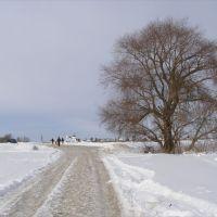по дороге в Бобренев монастырь, Коломна