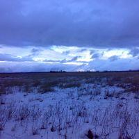 поле, Колюбакино
