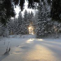 Мороз и Солнце - день чудесный !, Колюбакино