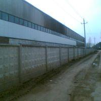 Завод ))) Нынче изготавливает пакеты, 04.08, Колюбакино