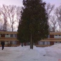 Бугорок, январь 2008, Косино