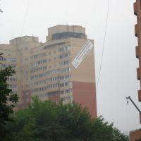 Агенство Недвижимости с покосившейся репутацией, Котельники