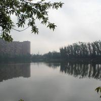 Платная рыбалка в Котельниках, Котельники