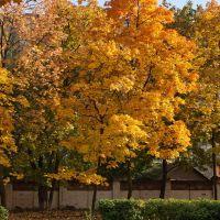 Autumn colors, Красково