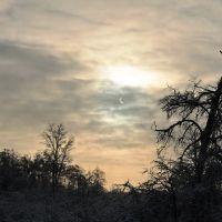 Солнечное затмение над парком усадьбы Красково, Красково