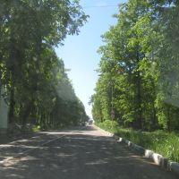 Проспект Ленина, Красноармейск