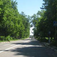 Проспект в деревьях, Красноармейск