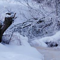 Зимний сон, Краснозаводск