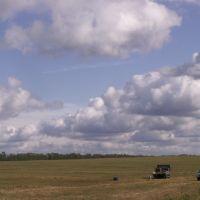 Field, Краснозаводск