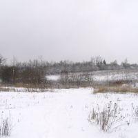 Вид на садовое товарищество Луч от автобусной остановки., Крюково