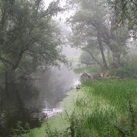 Дым от горящих торфяников над Лопасней летом 2010 г., Крюково