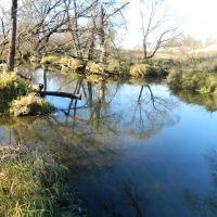Река Лопасня. Ноябрь., Крюково