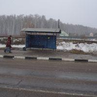 Остановка автобуса, Крюково