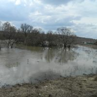 Весенний разлив 2012 г., Крюково
