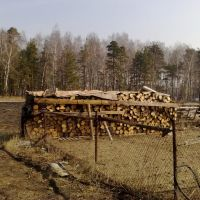 дрова, Купавна
