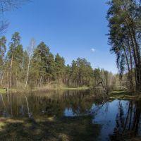 ближний пруд 3, Куровское