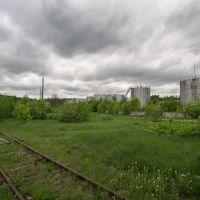 танки, Куровское