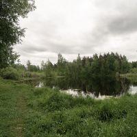 очередной пруд, Куровское