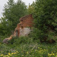 красная стена, Куровское