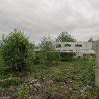 руины 2, Куровское