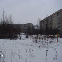 Лесной Городок зимой, Лесной Городок