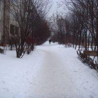 Зимой, Лесной Городок