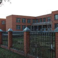 Гимназия, Ликино-Дулево