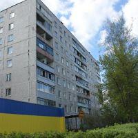 Октябрьская улица, 16, Ликино-Дулево