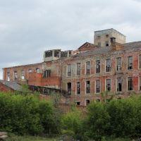 Фабрика. Руины., Ликино-Дулево