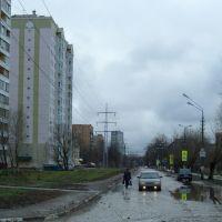 January 2007, Лобня