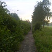 """Дорожка к """"Усадьбе Брюса"""", Лосино-Петровский"""