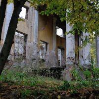 Разрушенная церковь Иоанна Богослова в усадьбе Глинки, Лосино-Петровский