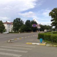 Центр, Лотошино