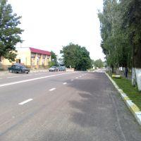 Главная дорога, Лотошино