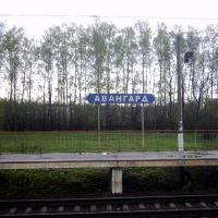 Platforma Avangard (2005), Лукино