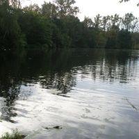 Верхний пруд, Лукино